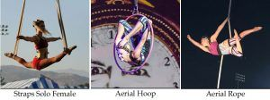 The solo aerialist pictures are here to demonstrate what kind acts what circus acts cost
